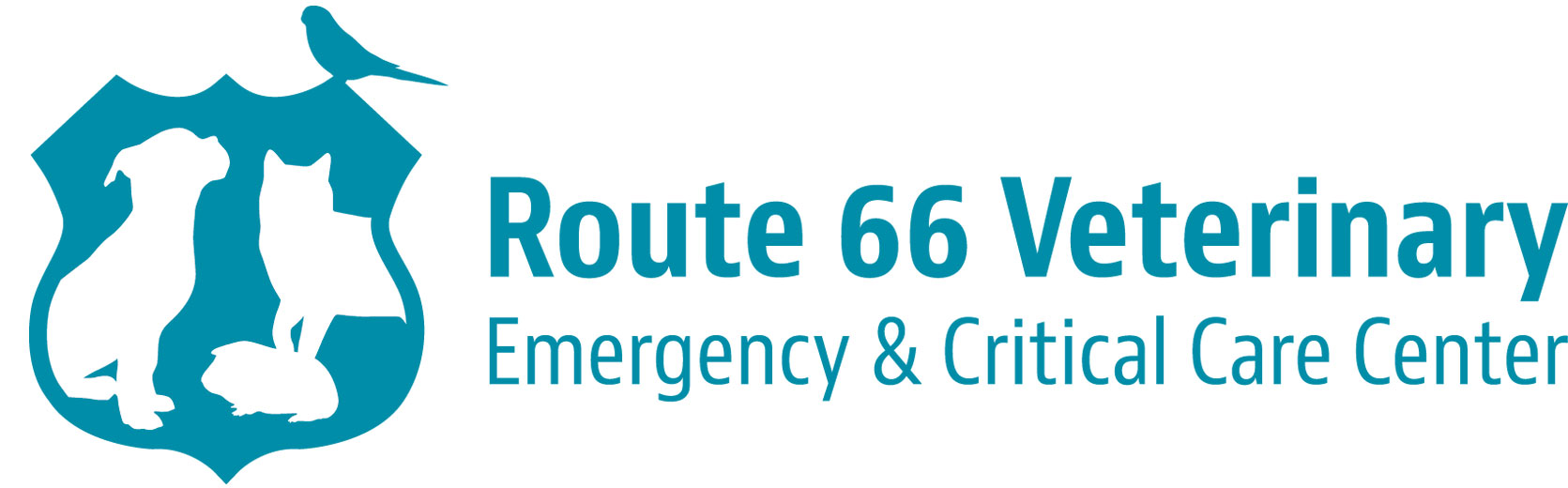 66 1257 Best Route 66 Images On Pinterest Route 66 Road  : Rt66VetLogoCOLOR from otri.us size 1671 x 520 jpeg 92kB