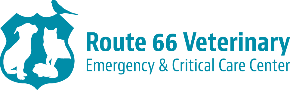 Route 66 Veterinary Emergency & Critical Care Center