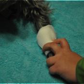 Basic pet wound dressing step 1